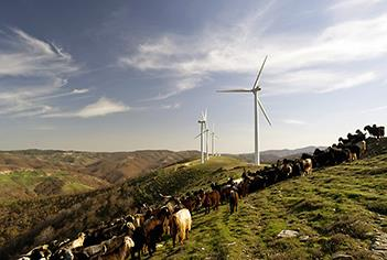 Enel to build 320MW of wind and solar projects in Spain