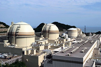 Japan restarts another nuclear reactor