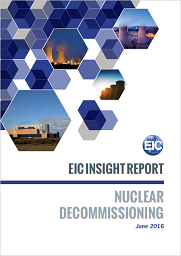 Nuclear Decommissioning Insight Report