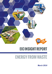 Energy Storage EIC Insight Report