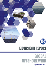 FSRU and FLNG Insight Report