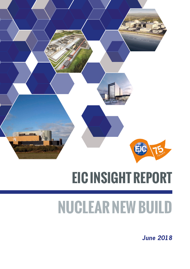 Downstream EIC Insight Report